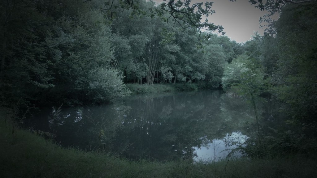 One of the lakes on the Percy's Estate...