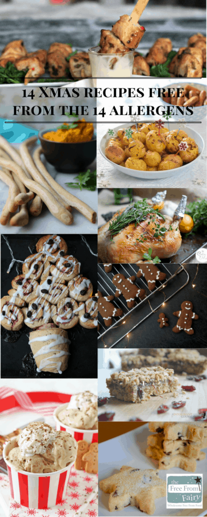 14 Christmas recipes free from 14 allergens. Include everyone with allergies and intolerances this Christmas by making some of these simple easy dishes