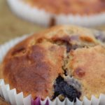 Gluten Free Blueberry Muffins (Low Sugar)