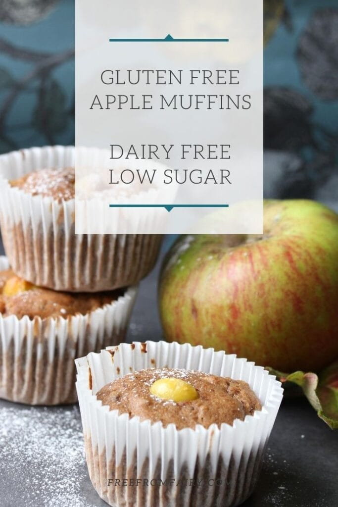 Gluten free apple muffins; a simple moist recipe that is dairy free and low in sugar as well as gluten free.